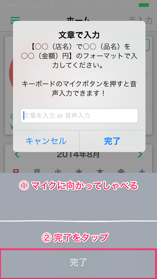 ios_guide_voice_input_ss_03